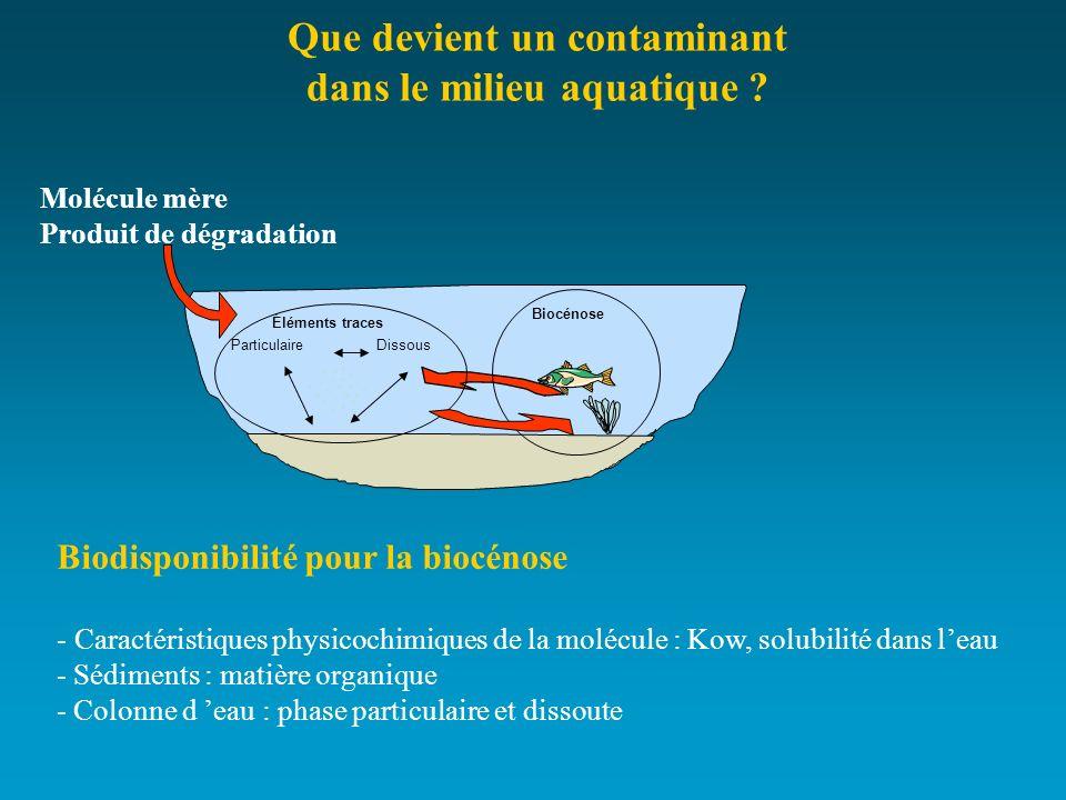 DissousParticulaire Biocénose Éléments traces Que devient un contaminant dans le milieu aquatique ? Biodisponibilité pour la biocénose - Caractéristiq