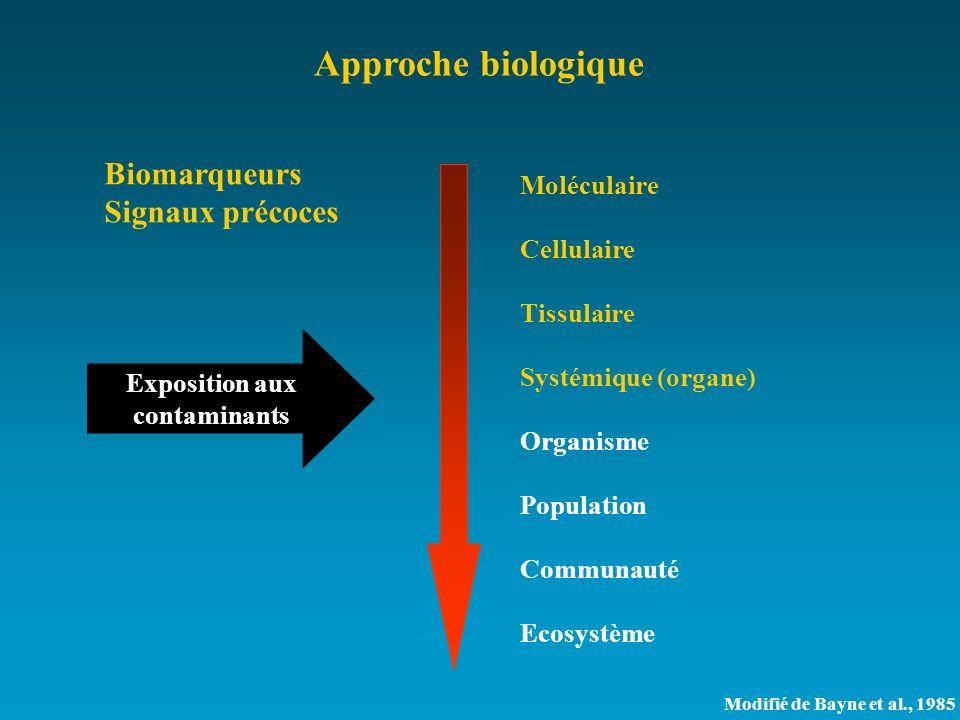 Approche biologique Biomarqueurs Signaux précoces Exposition aux contaminants Moléculaire Cellulaire Tissulaire Systémique (organe) Organisme Populati