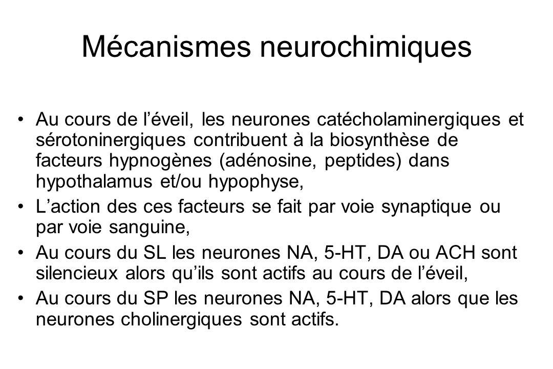 Mécanismes neurochimiques Au cours de léveil, les neurones catécholaminergiques et sérotoninergiques contribuent à la biosynthèse de facteurs hypnogèn