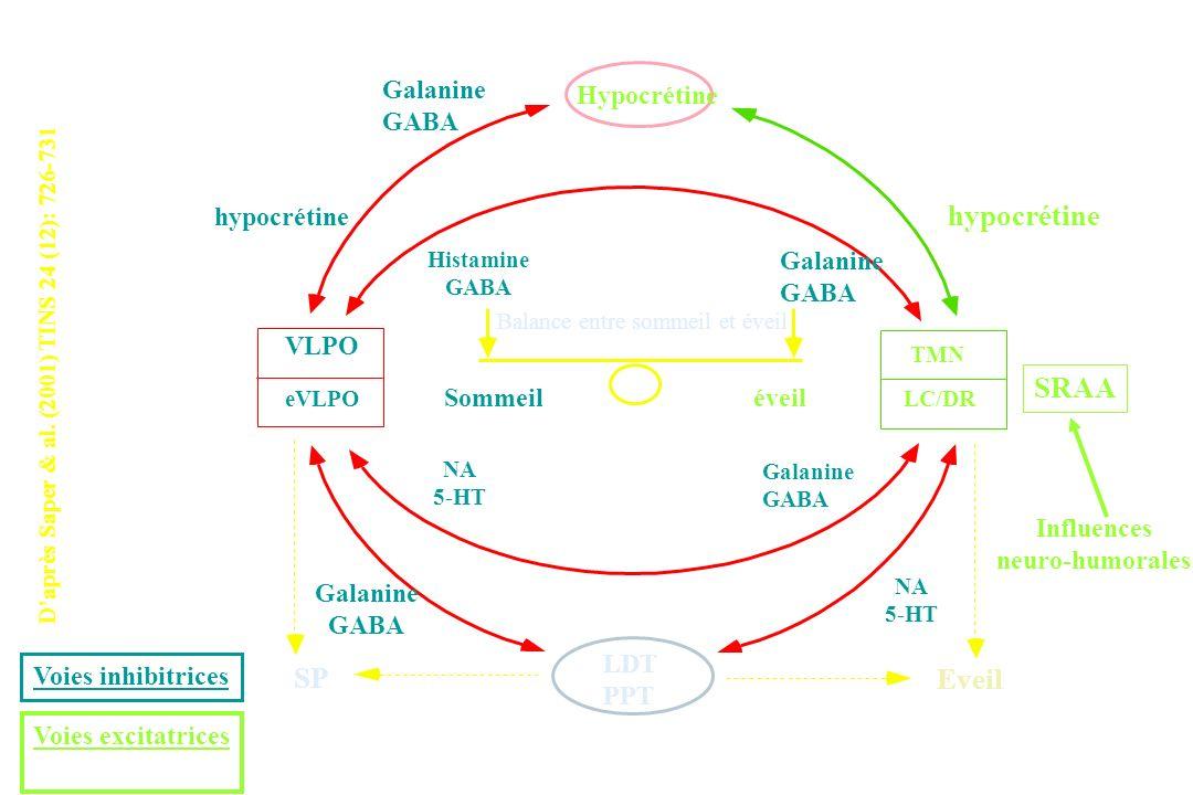Daprès Saper & al. (2001) TINS 24 (12): 726-731 Hypocrétine hypocrétine SRAA TMN LC/DR Sommeiléveil VLPO eVLPO SP LDT PPT Eveil NA 5-HT NA 5-HT Galani