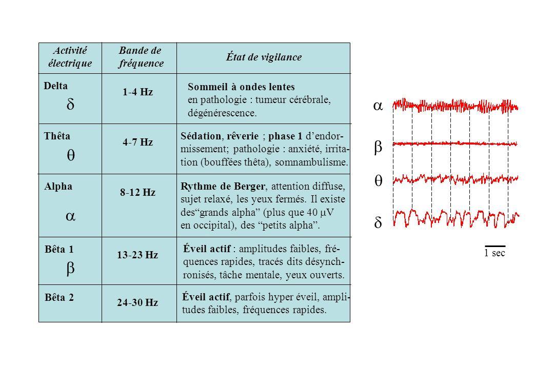 Activité électrique Bande de fréquence État de vigilance Delta 1-4 Hz Sommeil à ondes lentes en pathologie : tumeur cérébrale, dégénérescence. Thêta 4