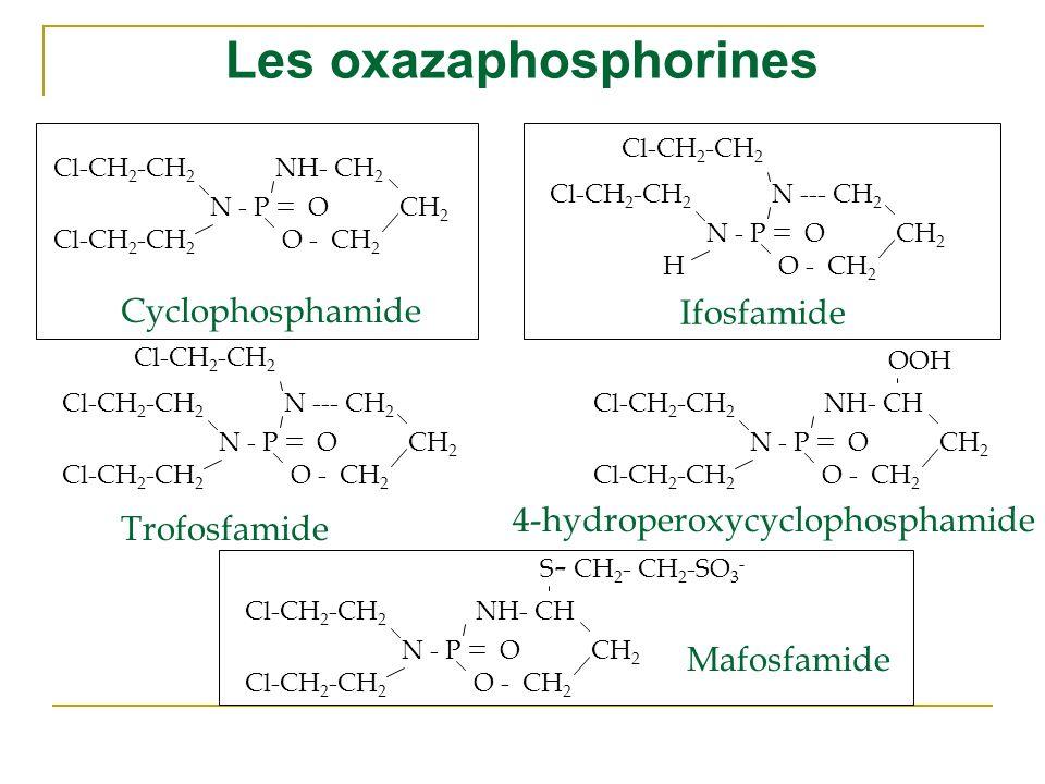 Les oxazaphosphorines Cl-CH 2 -CH 2 NH- CH 2 O - CH 2 N - P OCH 2 Cl-CH 2 -CH 2 N --- CH 2 O - CH 2 N - P OCH 2 Cl-CH 2 -CH 2 H N --- CH 2 O - CH 2 N