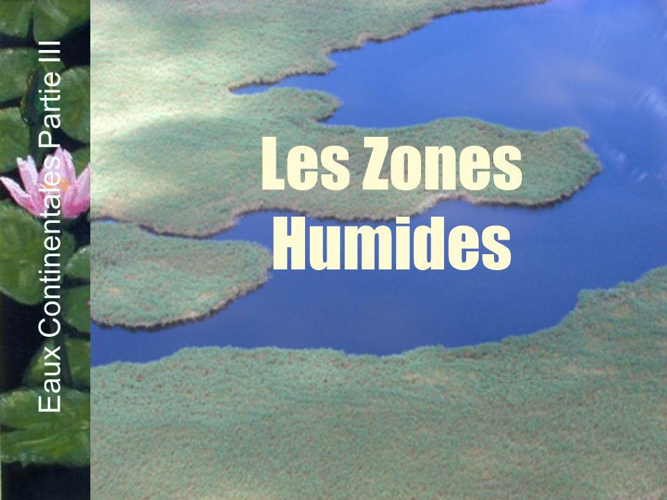 Les Zones Humides Eaux Continentales Partie III