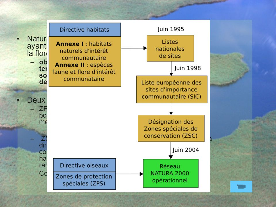 Life Natura 2000 Natura 2000 est un réseau européen de sites naturels ayant une grande valeur patrimoniale, par la faune et la flore exceptionnelles q