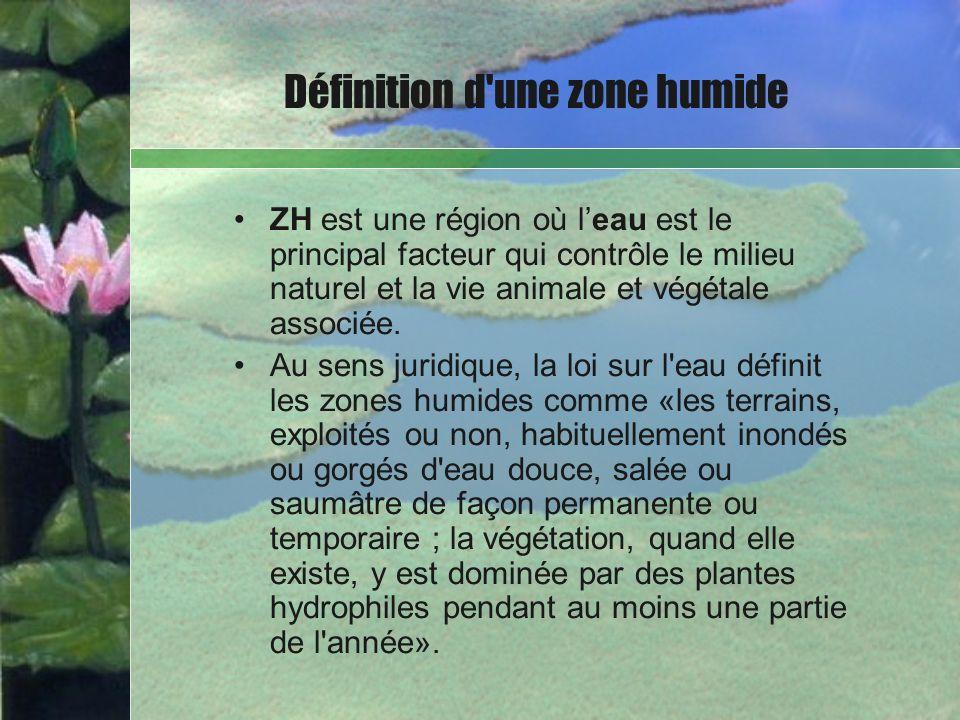 ZH est une région où leau est le principal facteur qui contrôle le milieu naturel et la vie animale et végétale associée. Au sens juridique, la loi su