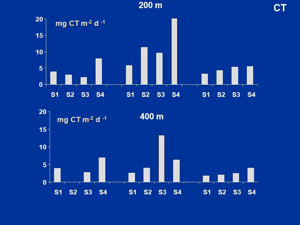 200 m 0 5 10 15 20 S1S2S3S4S1S2S3S4S1S2S3S4 0 5 10 15 20 S1S2S3S4S1S2S3S4S1S2S3S4 400 m mg CT m -2 d -1 CT