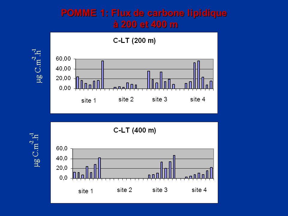 POMME 1: Flux de carbone lipidique à 200 et 400 m µg C.m - 2.h - 1 site 1 site 2site 3 site 4 site 1 site 2site 3 site 4 µg C.m - 2.h - 1