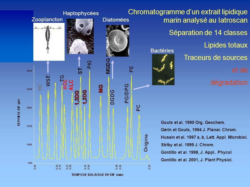 Chromatogramme dun extrait lipidique marin analysé au Iatroscan Séparation de 14 classes Lipides totaux Traceurs de sources et de dégradation Diatomée