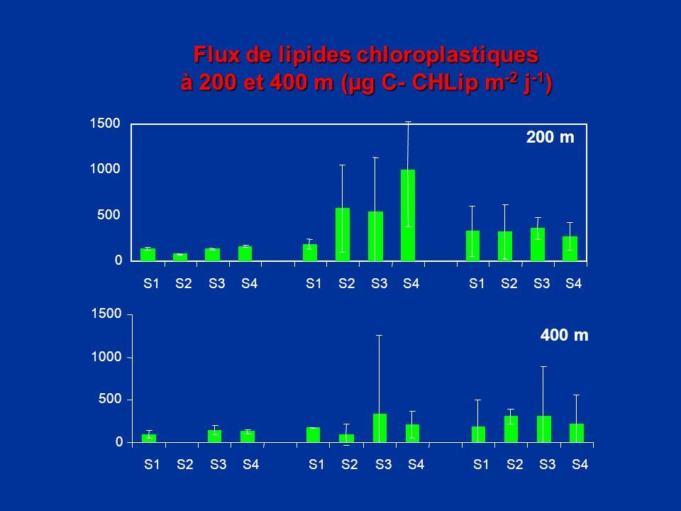 Flux de lipides chloroplastiques Flux de lipides chloroplastiques à 200 et 400 m (µg C- CHLip m -2 j -1 ) à 200 et 400 m (µg C- CHLip m -2 j -1 )