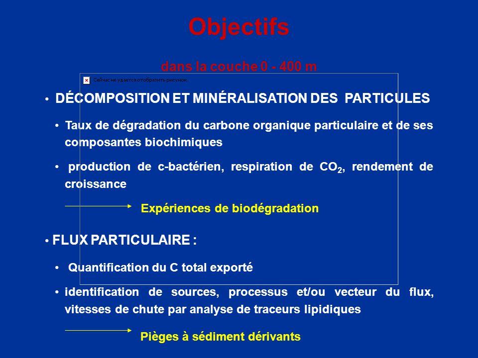 Objectifs dans la couche 0 - 400 m DÉCOMPOSITION ET MINÉRALISATION DES PARTICULES Taux de dégradation du carbone organique particulaire et de ses comp