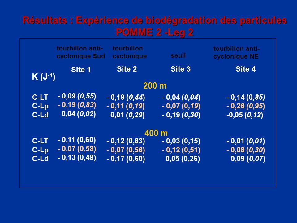 Résultats : Expérience de biodégradation des particules POMME 2 -Leg 2 tourbillon cyclonique tourbillon anti- cyclonique NE Site 2Site 3Site 4 K (J -1