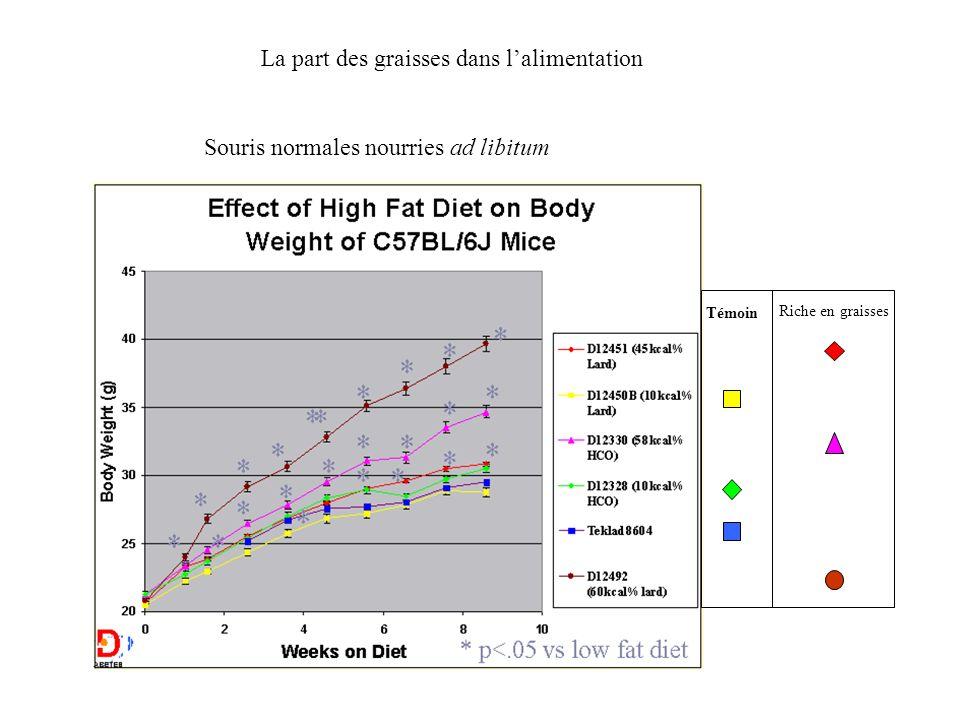 Souris normales nourries ad libitum Témoin Riche en graisses La part des graisses dans lalimentation