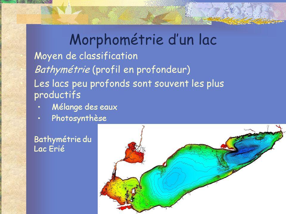 Morphométrie dun lac Moyen de classification Bathymétrie (profil en profondeur) Les lacs peu profonds sont souvent les plus productifs Mélange des eaux Photosynthèse Bathymétrie du Lac Erié