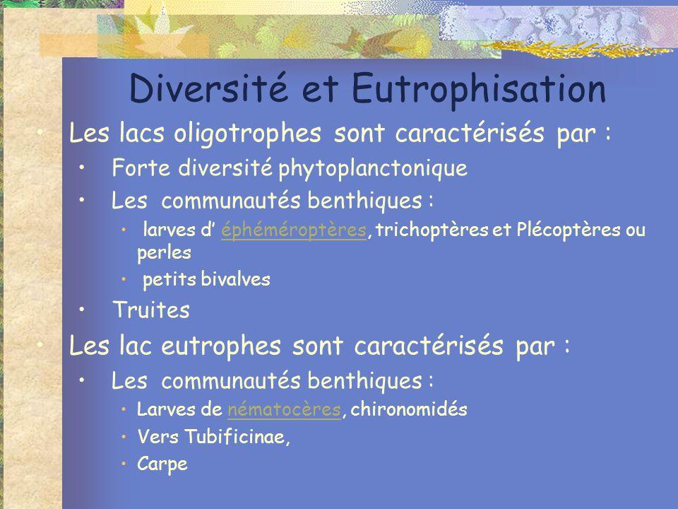 Diversité et Eutrophisation Les lacs oligotrophes sont caractérisés par : Forte diversité phytoplanctonique Les communautés benthiques : larves d éphé