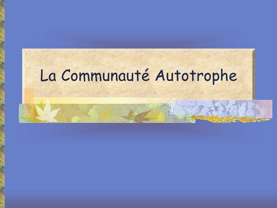 La Communauté Autotrophe