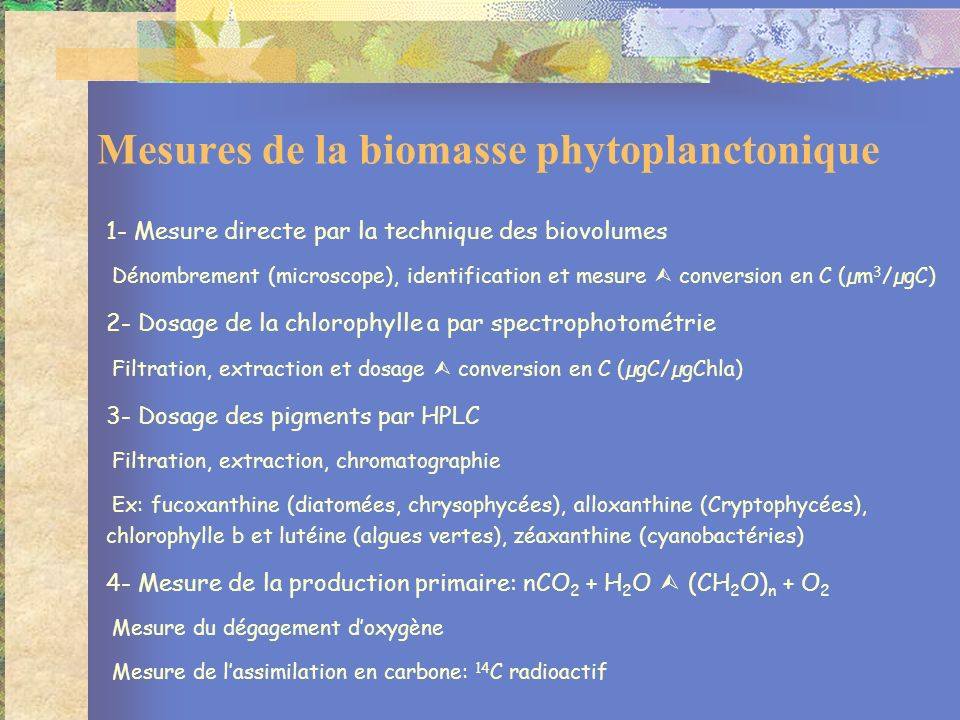1- Mesure directe par la technique des biovolumes Dénombrement (microscope), identification et mesure conversion en C (µm 3 /µgC) 2- Dosage de la chlo