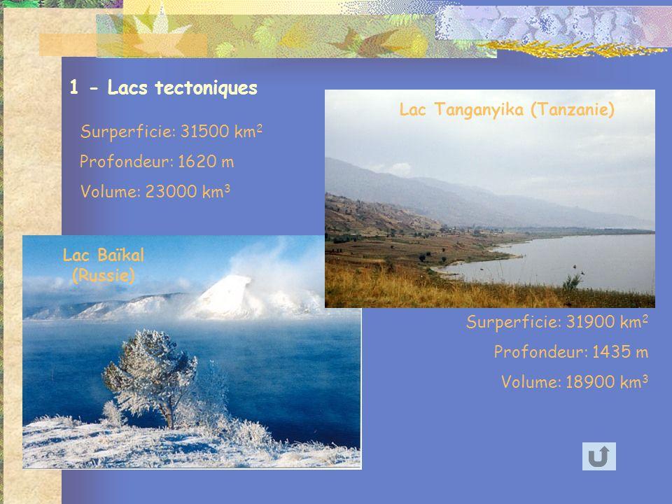 Lac Baïkal (Russie) Lac Tanganyika (Tanzanie) 1 - Lacs tectoniques Surperficie: 31900 km 2 Profondeur: 1435 m Volume: 18900 km 3 Surperficie: 31500 km 2 Profondeur: 1620 m Volume: 23000 km 3