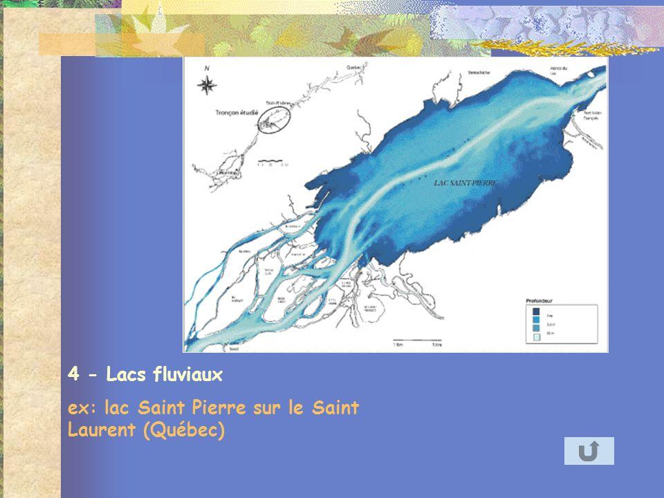 4 - Lacs fluviaux ex: lac Saint Pierre sur le Saint Laurent (Québec)