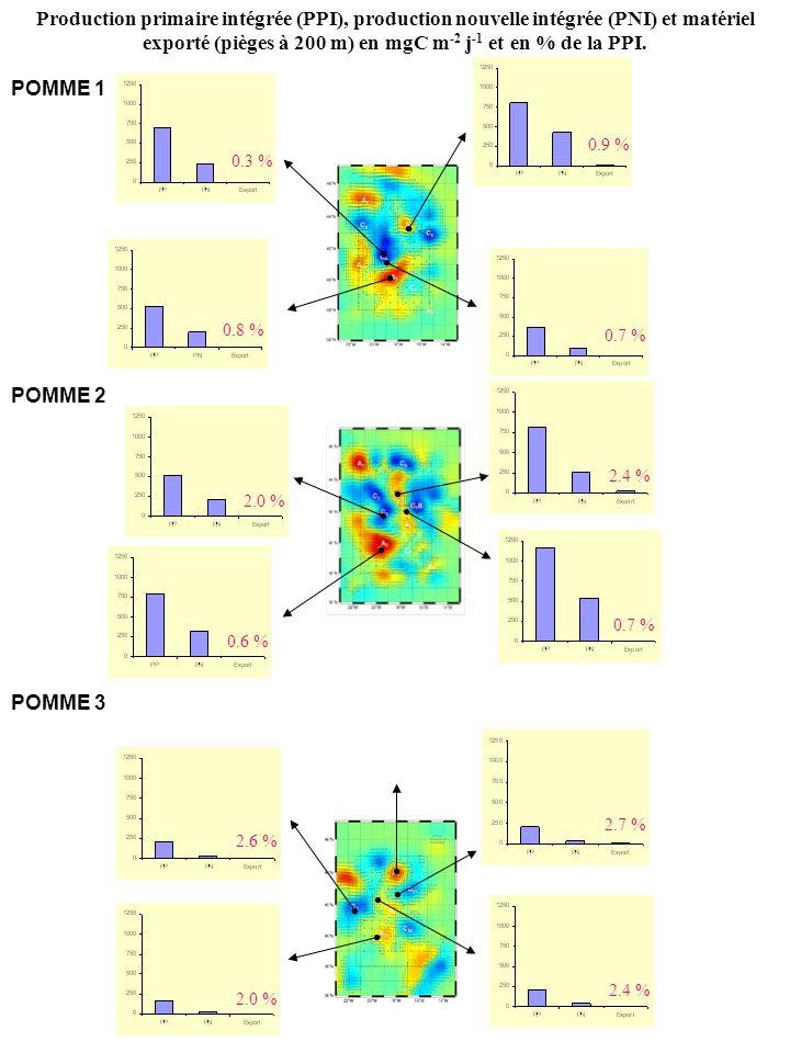 POMME 1 POMME 2 POMME 3 Production primaire intégrée (PPI), production nouvelle intégrée (PNI) et matériel exporté (pièges à 200 m) en mgC m -2 j -1 et en % de la PPI.