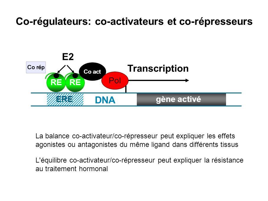 Co-régulateurs: co-activateurs et co-répresseurs La balance co-activateur/co-répresseur peut expliquer les effets agonistes ou antagonistes du même li
