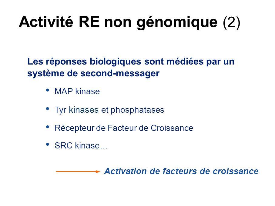 Effets non génomiques Osborne & Schiff, 2005