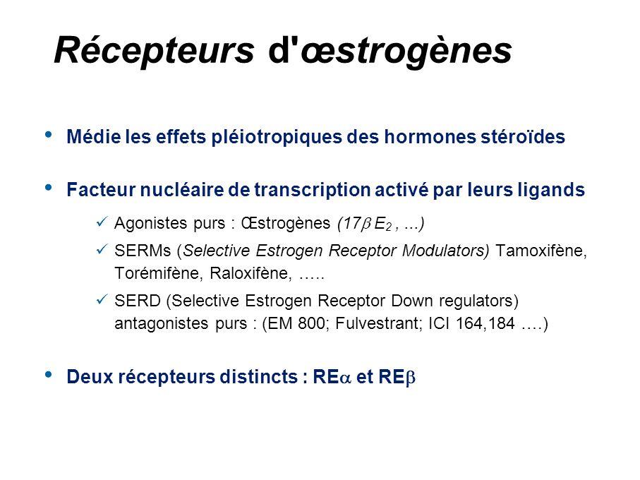 Traitements anti-hormonaux