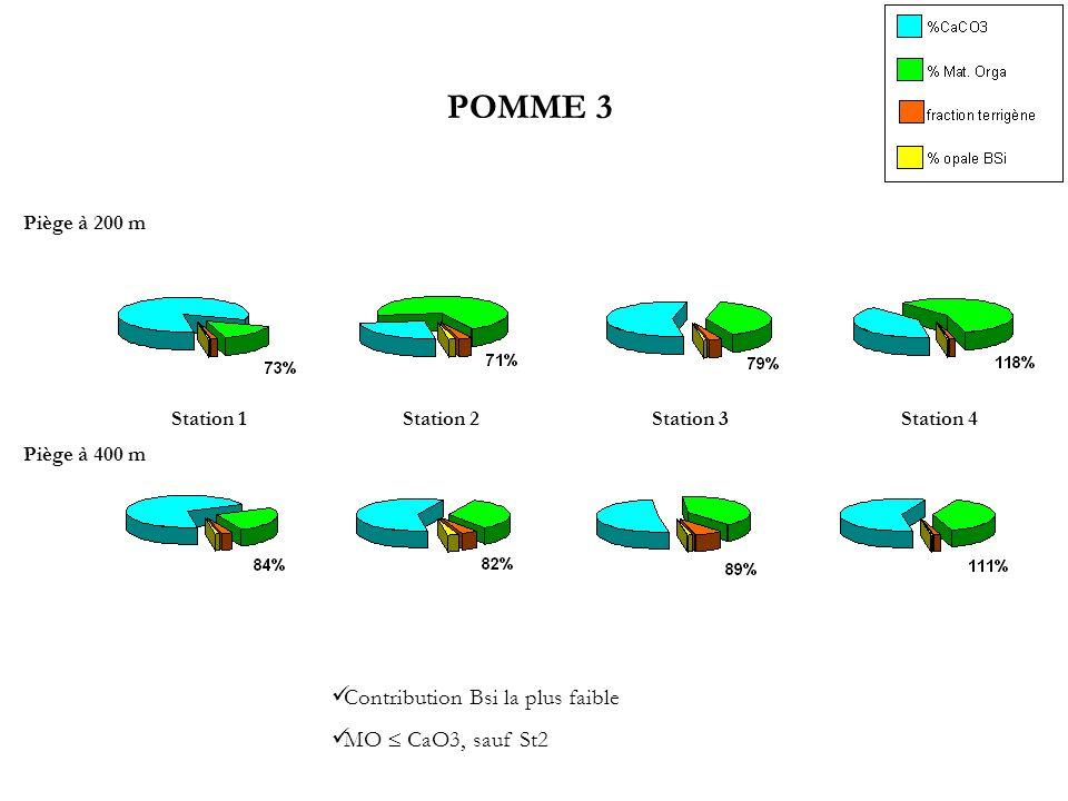Piège à 400 m Piège à 200 m Station 1Station 2Station 3Station 4 POMME 3 Contribution Bsi la plus faible MO CaO3, sauf St2