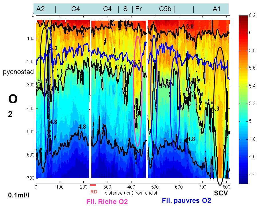 séminaire MIO 5 X 201237 0.1ml/l O2O2 A2 | C4 C4 | S | Fr C5b | | A1 RD SCV pycnostad Fil.