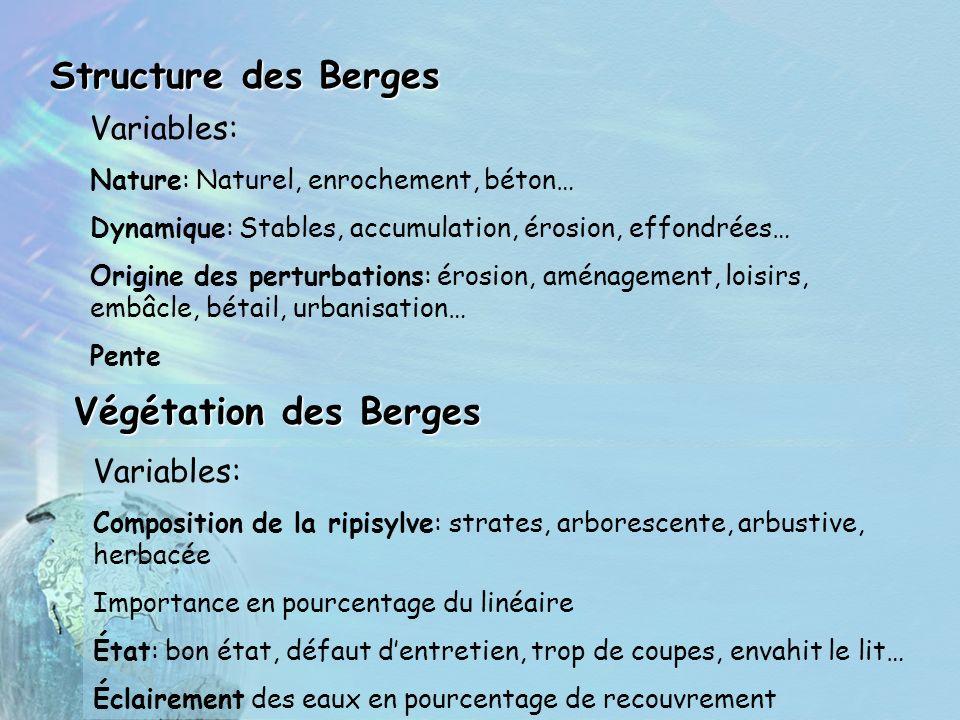 Structure des Berges Végétation des Berges Variables: Nature: Naturel, enrochement, béton… Dynamique: Stables, accumulation, érosion, effondrées… Orig
