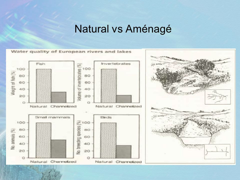 Natural vs Aménagé