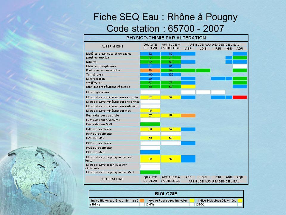Fiche SEQ Eau : Rhône à Pougny Code station : 65700 - 2007