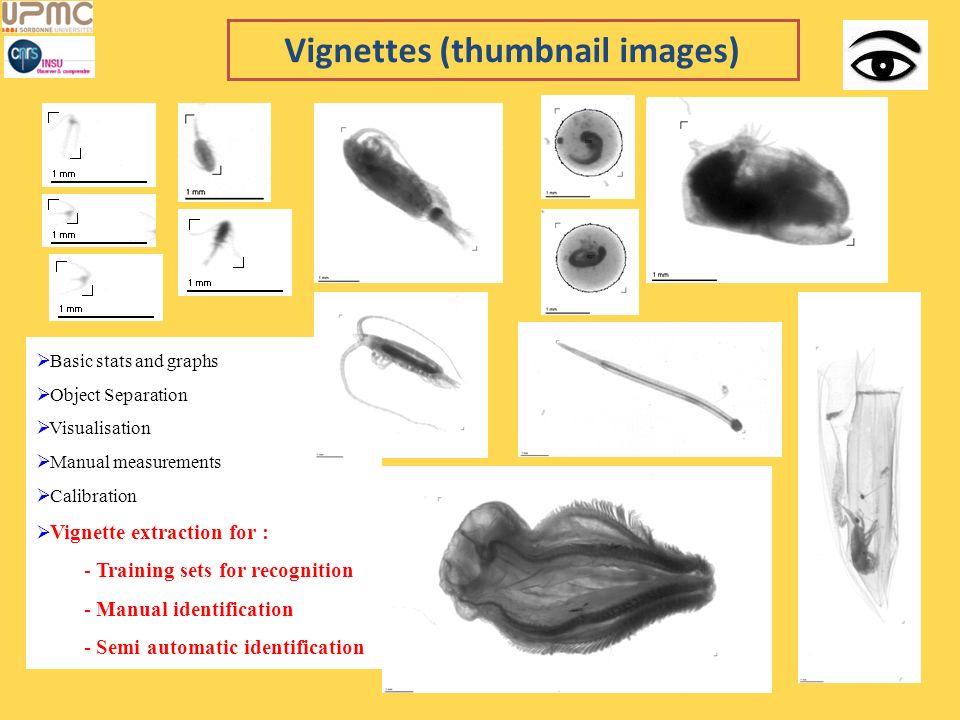 Vignettes (thumbnail images) Basic stats and graphs Object Separation Visualisation Manual measurements Calibration Vignette extraction for : - Traini