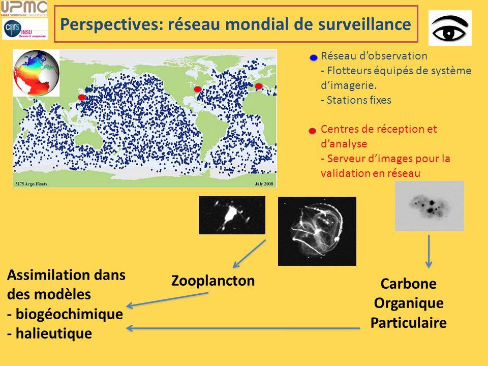 Perspectives: réseau mondial de surveillance Réseau dobservation - Flotteurs équipés de système dimagerie. - Stations fixes Centres de réception et da