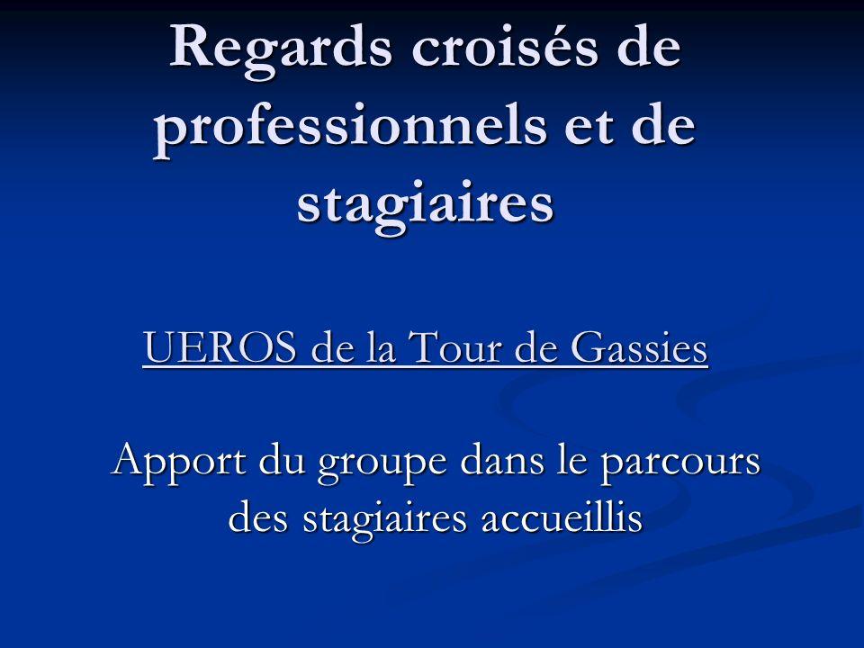 Regards croisés de professionnels et de stagiaires UEROS de la Tour de Gassies Apport du groupe dans le parcours des stagiaires accueillis