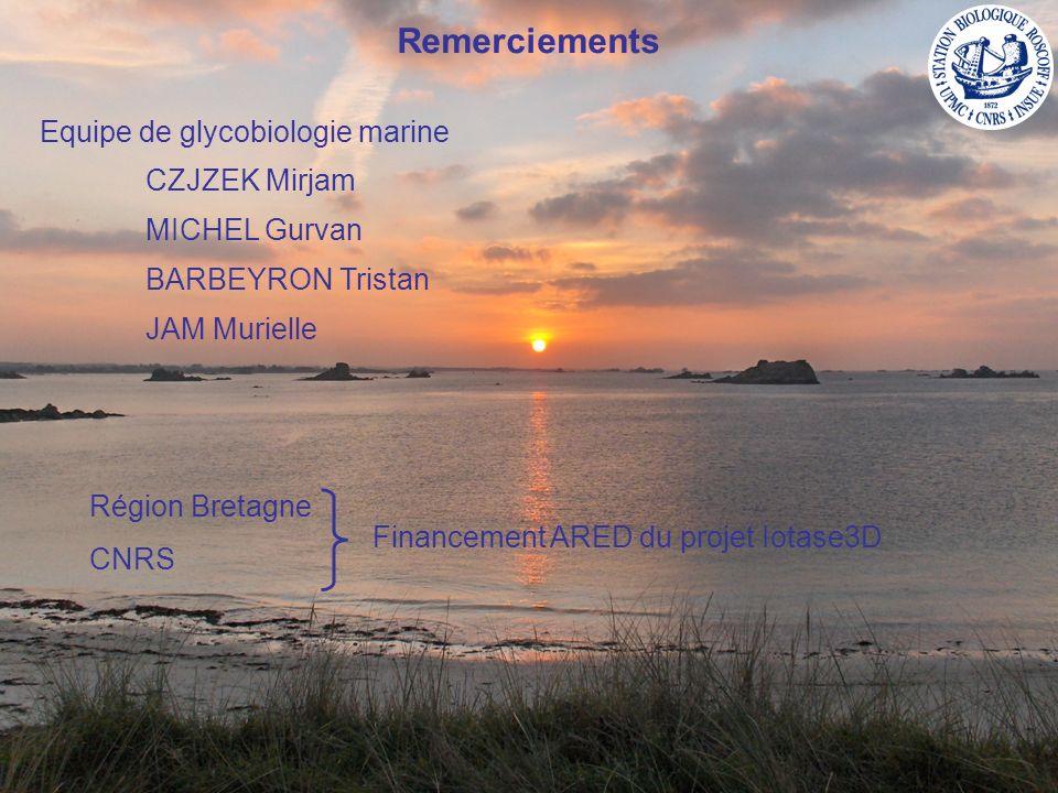 Remerciements Equipe de glycobiologie marine CZJZEK Mirjam MICHEL Gurvan BARBEYRON Tristan JAM Murielle Région Bretagne CNRS Financement ARED du proje