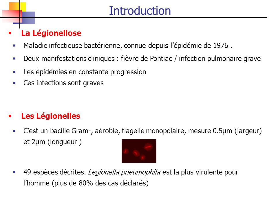 Maladie infectieuse bactérienne, connue depuis lépidémie de 1976. La Légionellose Les Légionelles Les épidémies en constante progression Deux manifest
