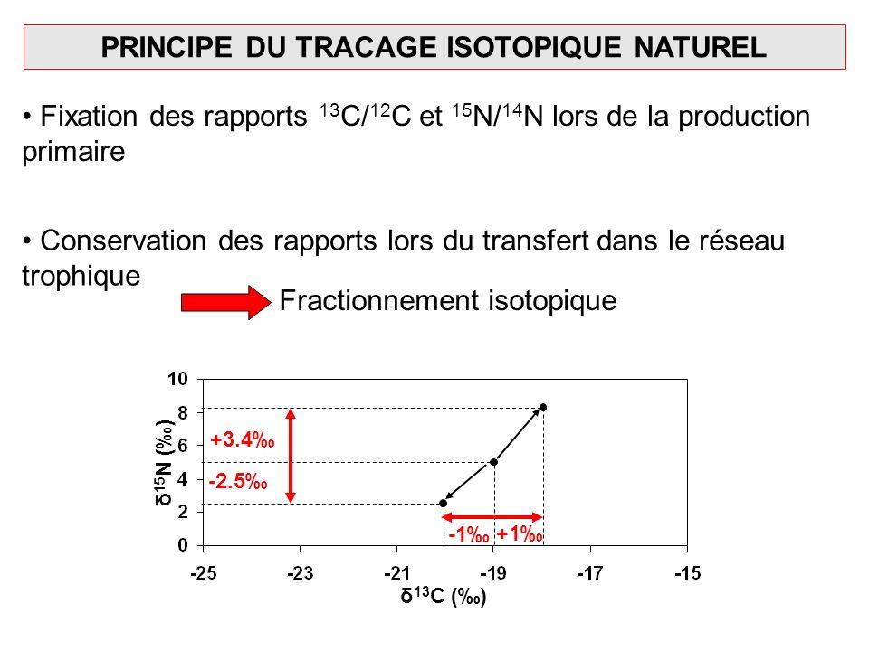 PRINCIPE DU TRACAGE ISOTOPIQUE NATUREL Fixation des rapports 13 C/ 12 C et 15 N/ 14 N lors de la production primaire Conservation des rapports lors du