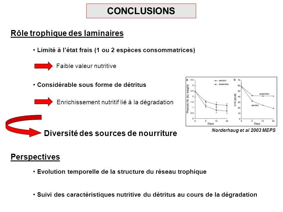CONCLUSIONS Rôle trophique des laminaires Limité à létat frais (1 ou 2 espèces consommatrices) Considérable sous forme de détritus Faible valeur nutri