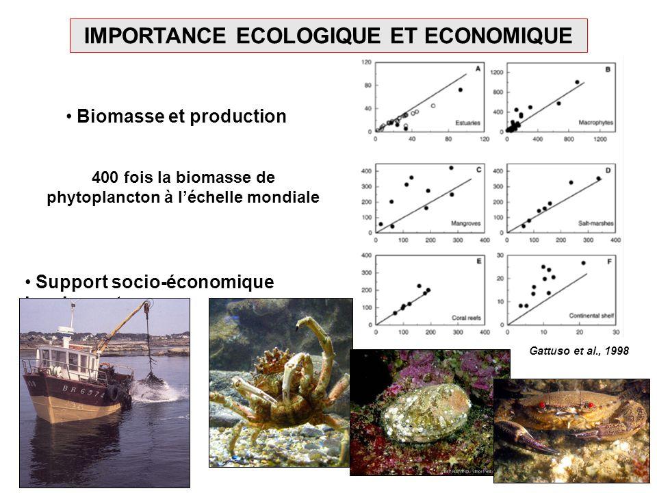 IMPORTANCE ECOLOGIQUE ET ECONOMIQUE Biomasse et production 400 fois la biomasse de phytoplancton à léchelle mondiale Gattuso et al., 1998 Support soci