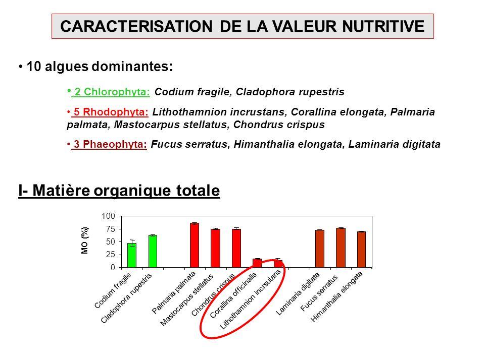 CARACTERISATION DE LA VALEUR NUTRITIVE 10 algues dominantes: 2 Chlorophyta: Codium fragile, Cladophora rupestris 5 Rhodophyta: Lithothamnion incrustan