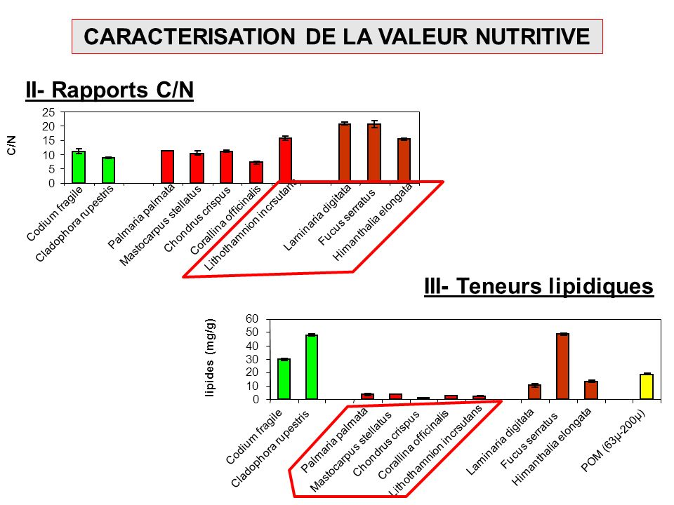 CARACTERISATION DE LA VALEUR NUTRITIVE II- Rapports C/N 0 5 10 15 20 25 Codium fragile Cladophora rupestris Palmaria palmata Mastocarpus stellatus Cho