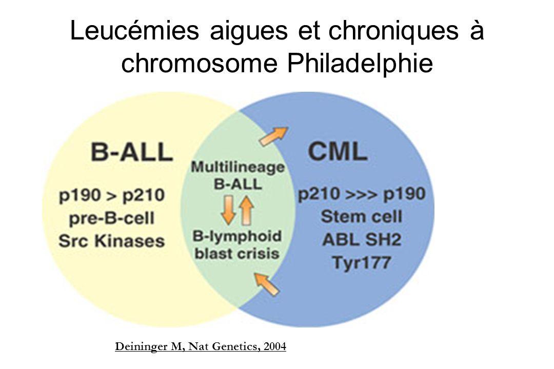 Leucémies aigues et chroniques à chromosome Philadelphie Deininger M, Nat Genetics, 2004