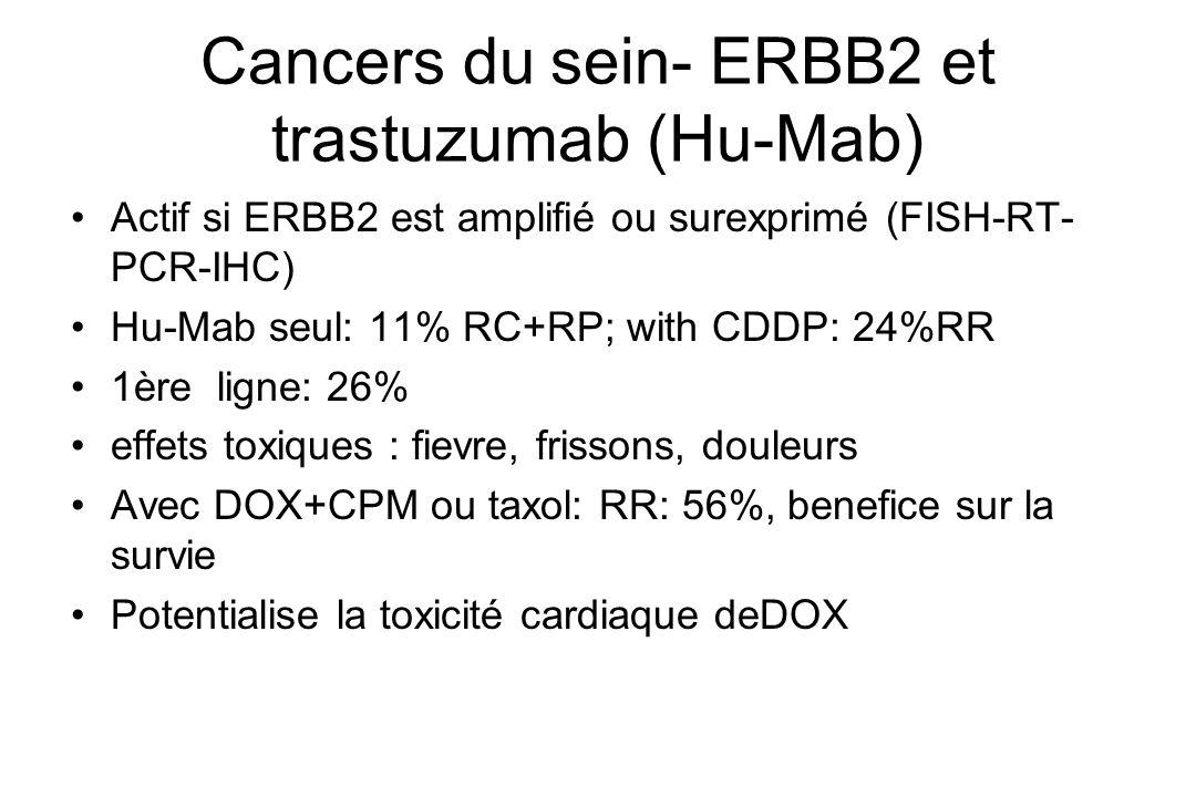 Cancers du sein- ERBB2 et trastuzumab (Hu-Mab) Actif si ERBB2 est amplifié ou surexprimé (FISH-RT- PCR-IHC) Hu-Mab seul: 11% RC+RP; with CDDP: 24%RR 1
