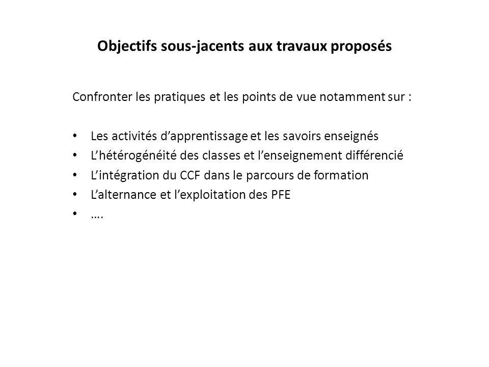 Objectifs sous-jacents aux travaux proposés Confronter les pratiques et les points de vue notamment sur : Les activités dapprentissage et les savoirs