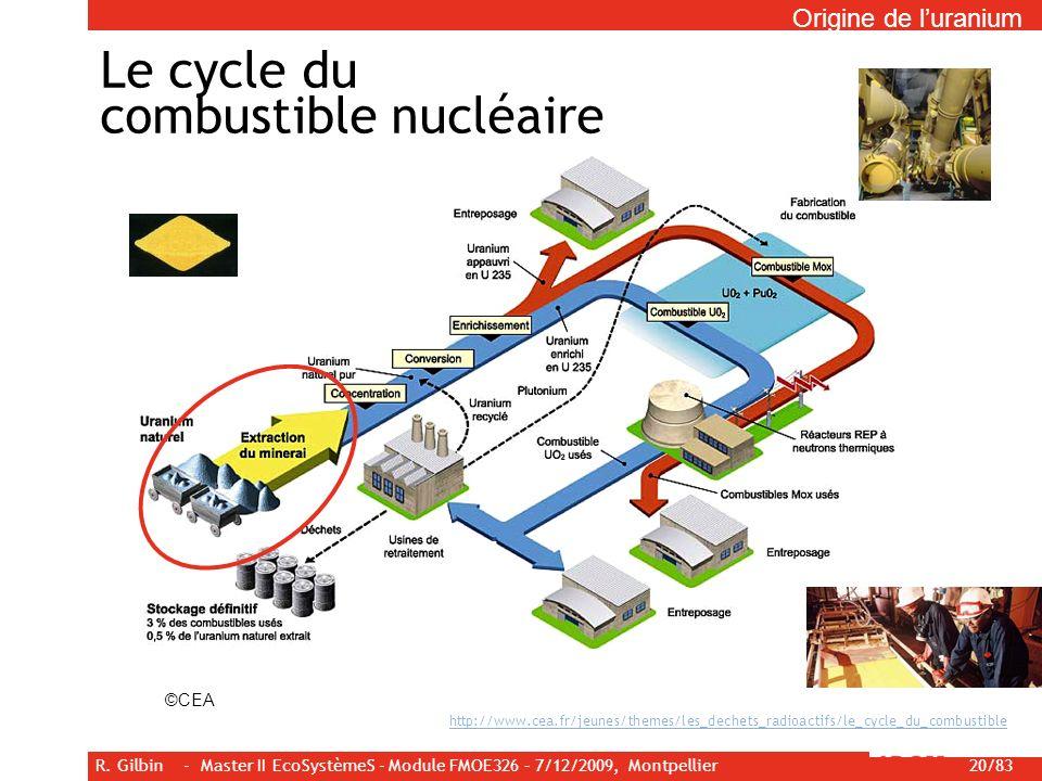 R. Gilbin - Master II EcoSystèmeS - Module FMOE326 – 7/12/2009, Montpellier 20/83 Le cycle du combustible nucléaire http://www.cea.fr/jeunes/themes/le