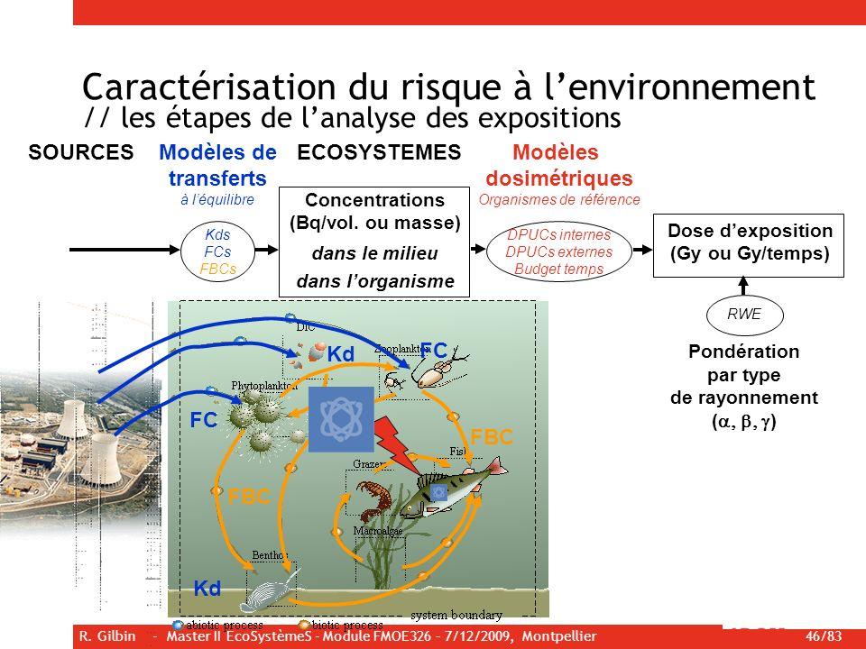 R. Gilbin - Master II EcoSystèmeS - Module FMOE326 – 7/12/2009, Montpellier 46/83 Caractérisation du risque à lenvironnement // les étapes de lanalyse
