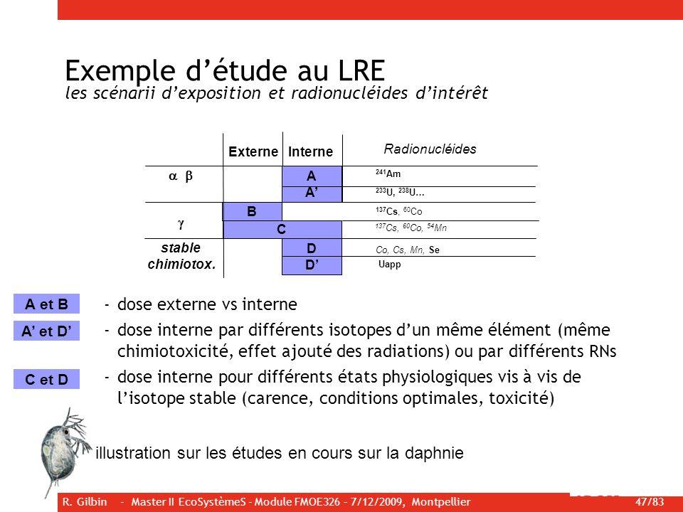 R. Gilbin - Master II EcoSystèmeS - Module FMOE326 – 7/12/2009, Montpellier 47/83 Exemple détude au LRE les scénarii dexposition et radionucléides din