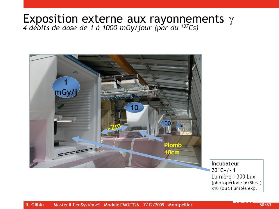 R. Gilbin - Master II EcoSystèmeS - Module FMOE326 – 7/12/2009, Montpellier 50/83 >2m Plomb 10cm 1 mGy/j 10 100 1000 Incubateur 20°C+/- 1 Lumière : 30