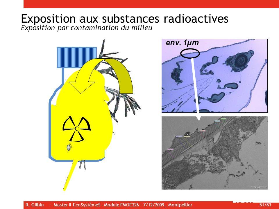 R. Gilbin - Master II EcoSystèmeS - Module FMOE326 – 7/12/2009, Montpellier 51/83 Cuticle Tissus - externe ( ) - interne ( ) Milieu Paroi de la boutei