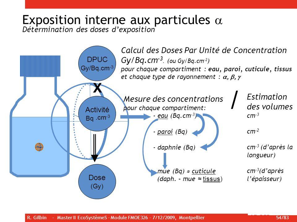 R. Gilbin - Master II EcoSystèmeS - Module FMOE326 – 7/12/2009, Montpellier 54/83 Calcul des Doses Par Unité de Concentration Gy/Bq.cm -3. ( ou Gy/Bq.